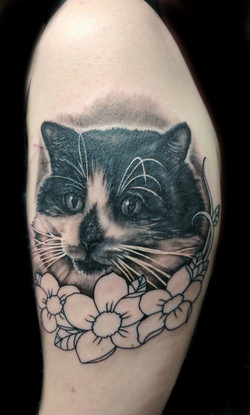 portrait cat flowers - left arm