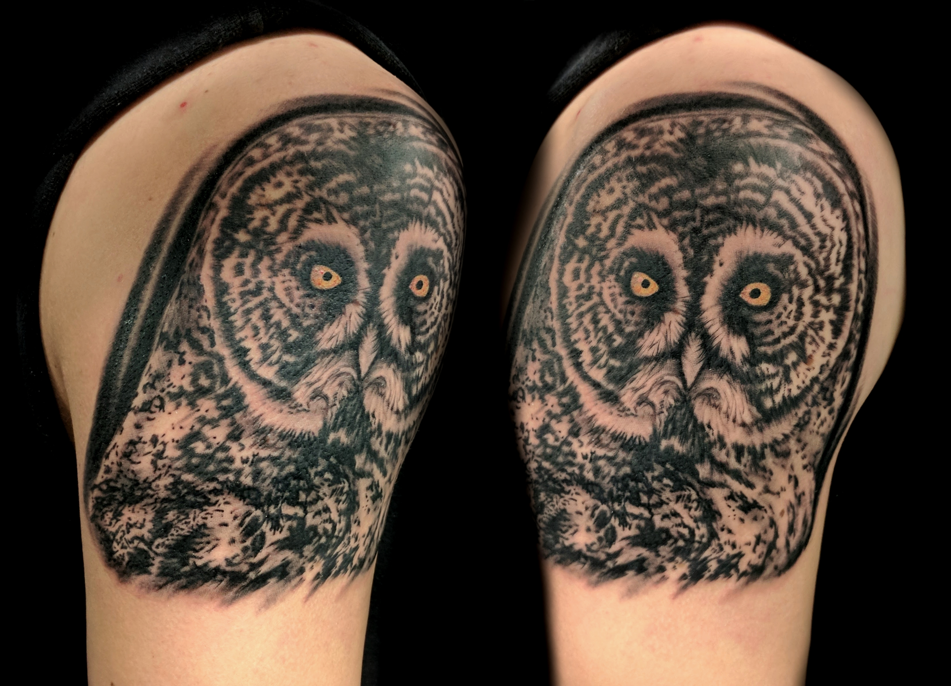 great owl - upper right arm