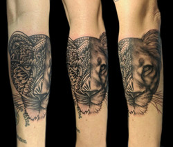 portrait - mandala lion - left forearm