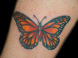 butterfly monarch - ankle