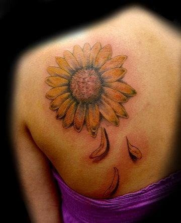 sunflower - shoulder