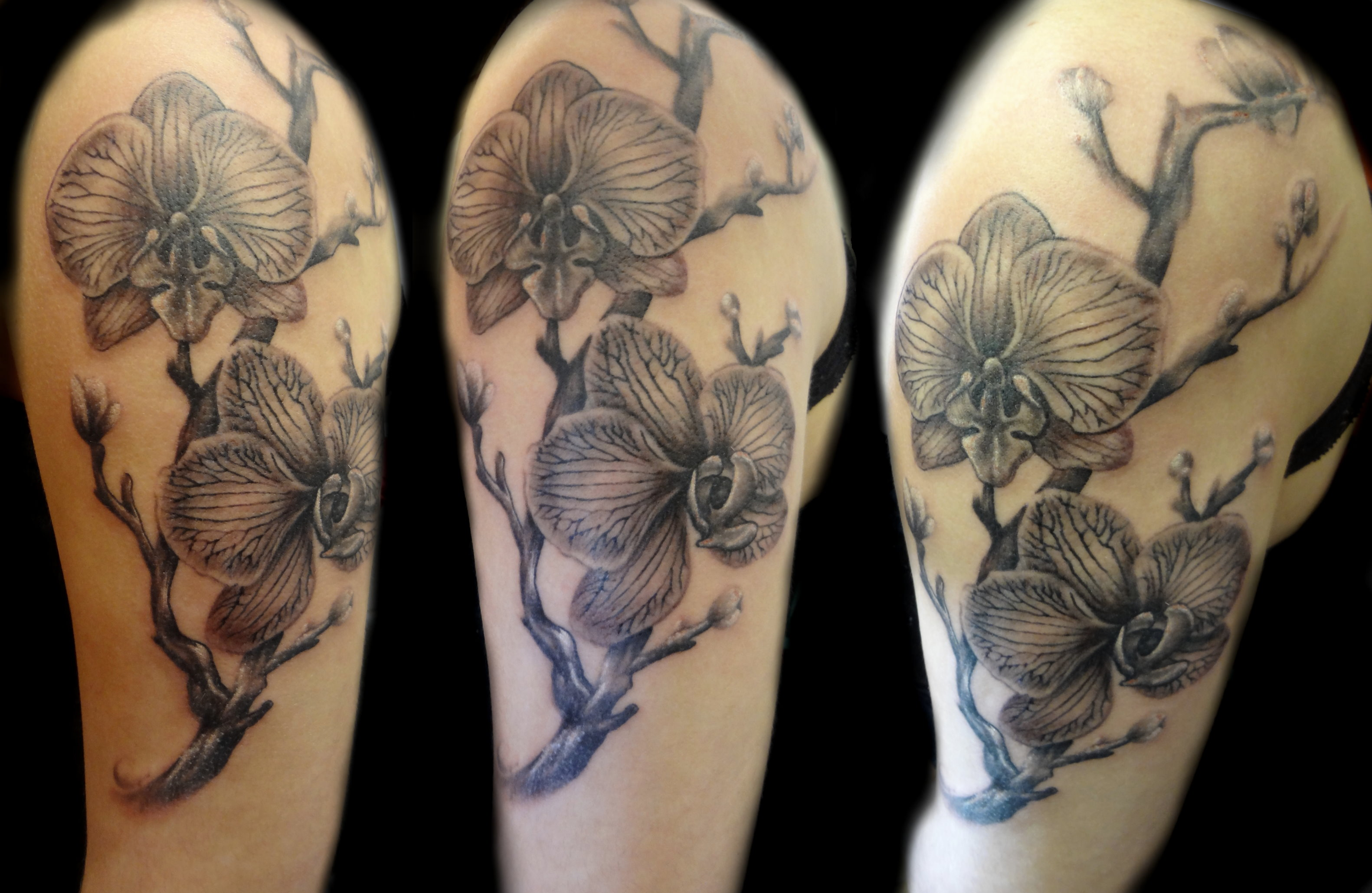 orchids - upper left arm