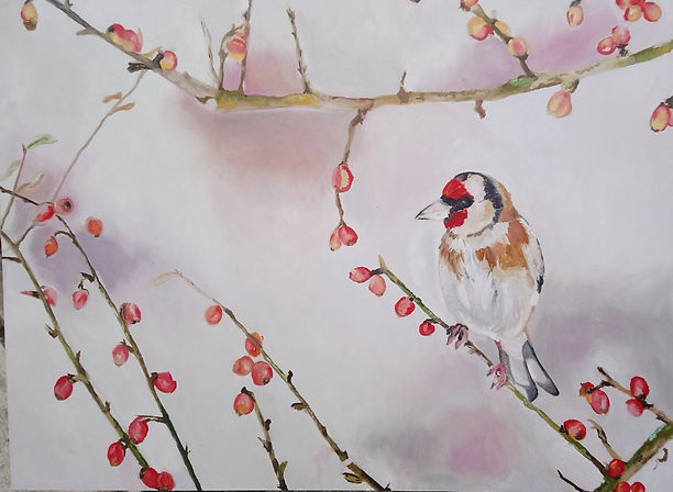 Goldfinch with rosehips.jpg