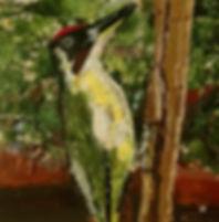 Green woodpecker.JPG