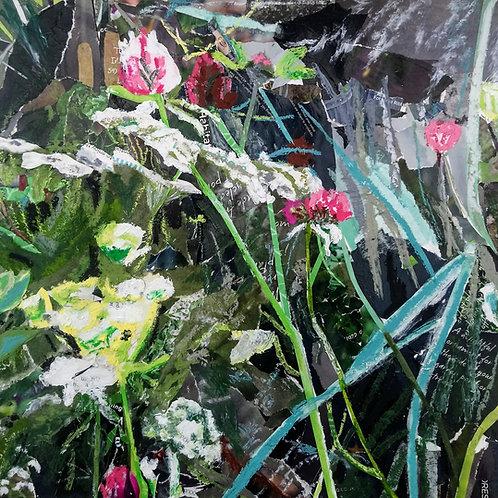 Clare's Garden 2