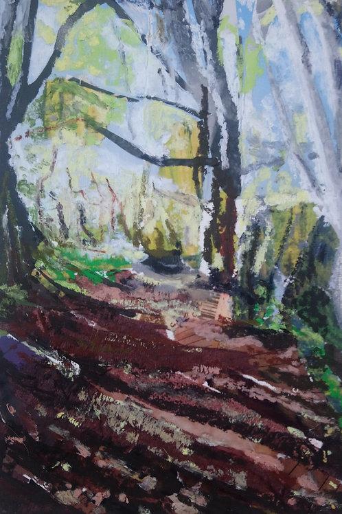 Selsdon Walk