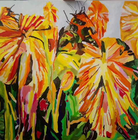 Kniphofia 2 (garden and slider), 100cm s