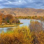 Boise River in Autumn.jpg