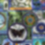 mknc_banner.jpg