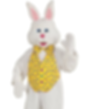 Easter Bunny Costume rental harrisburg pa area