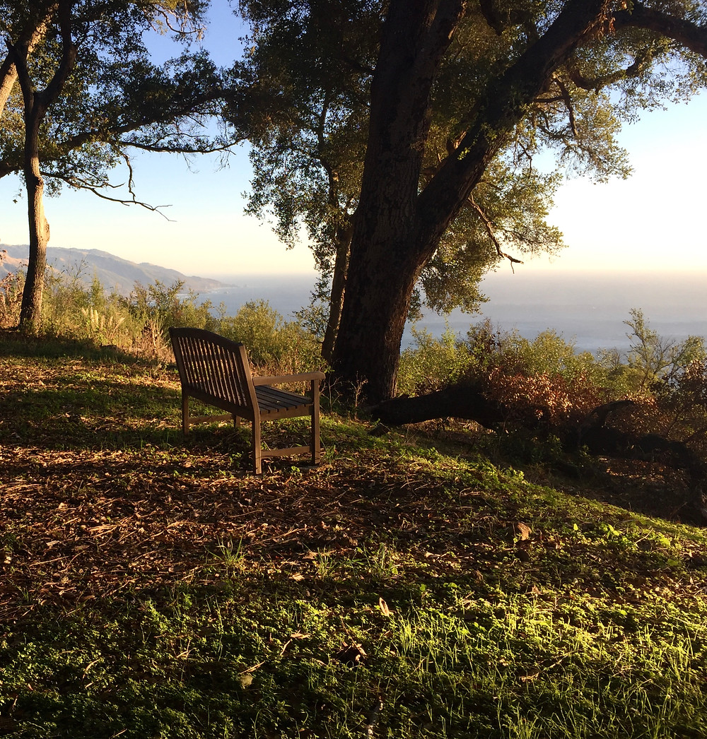 Reflection Bench, Lucia, CA   Photo by Martha Clark Scala