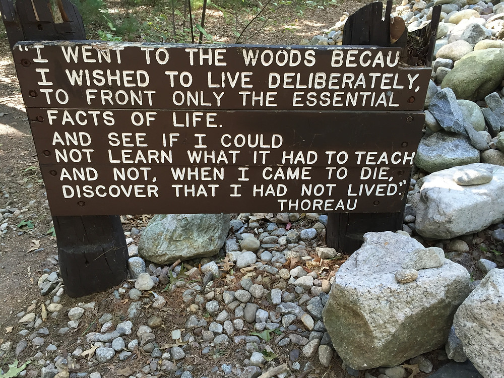 Henry David Thoreau Quote at Walden Pond, Concord, MA.   Photo by Martha Clark Scala