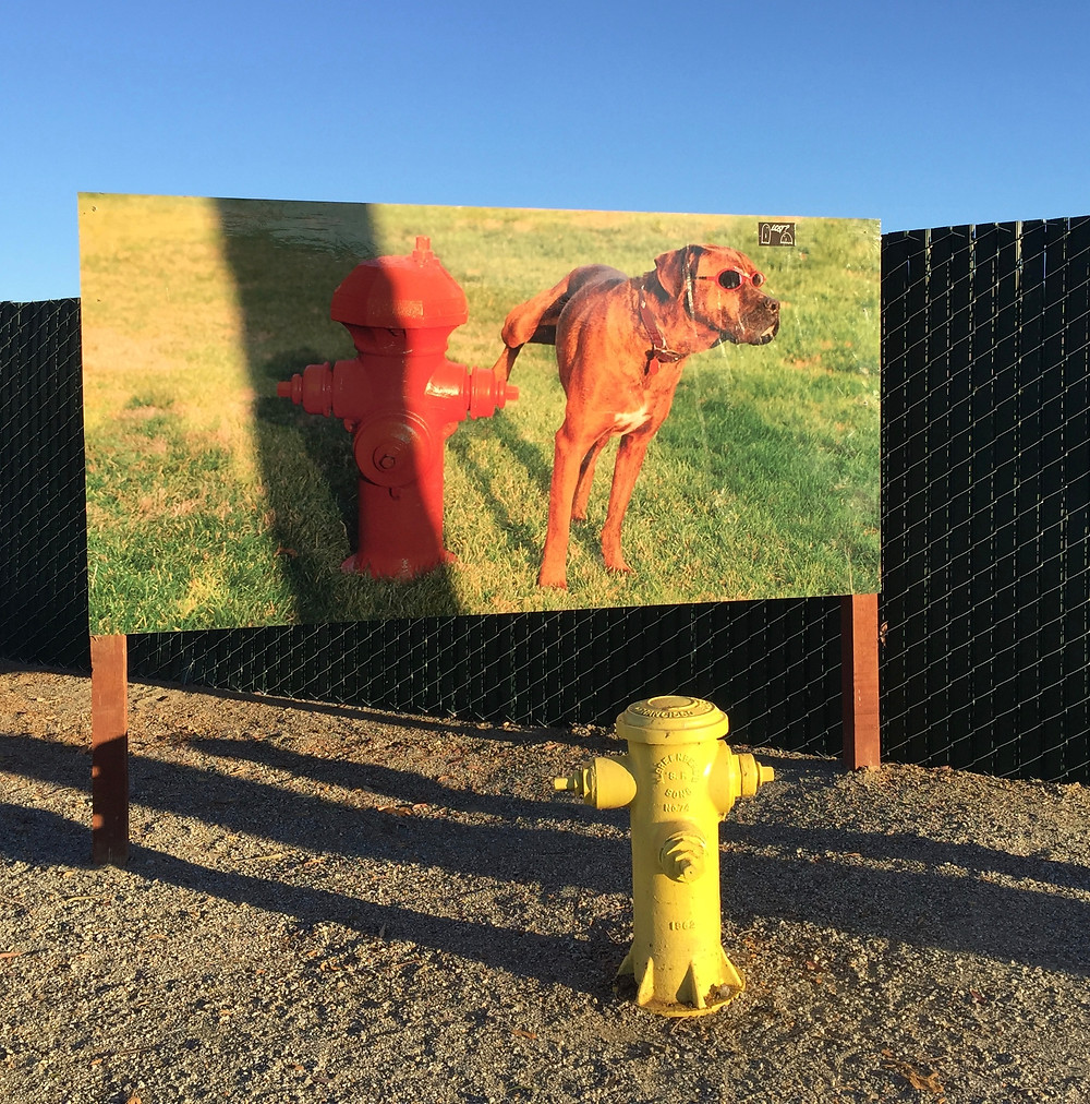 Roadside Art in Firebaugh, CA  Photo by Martha Clark Scala