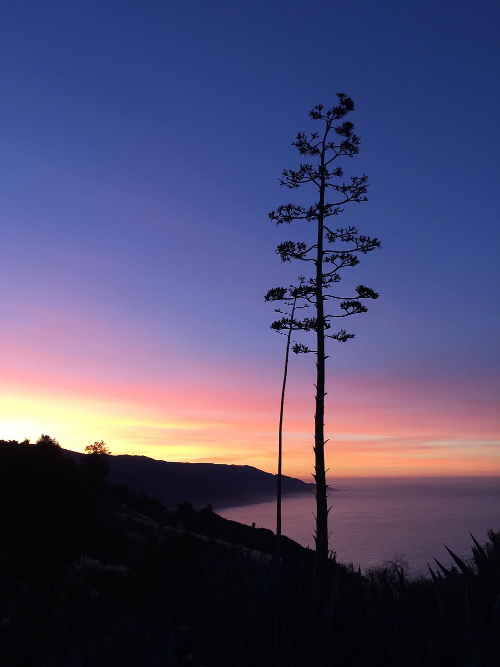 Monastery Sunrise     Photo by Martha Clark Scala