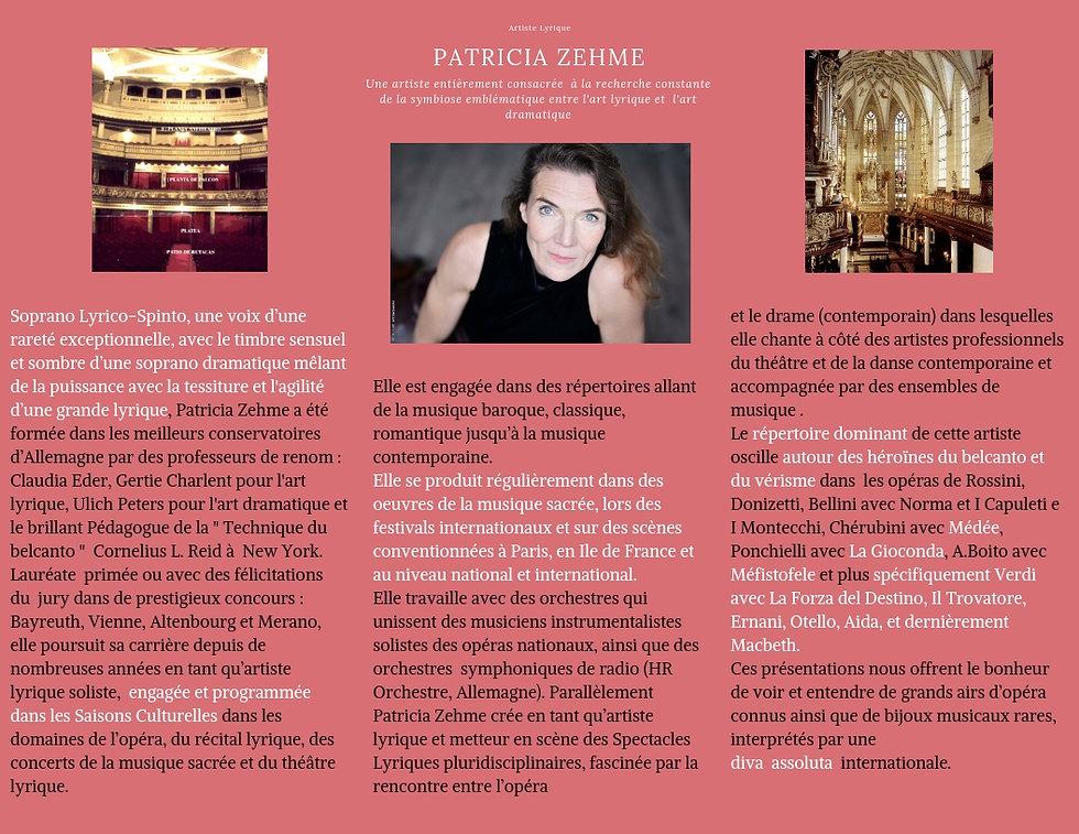 Brochure_Patricia_Zehme_Présentation_12_