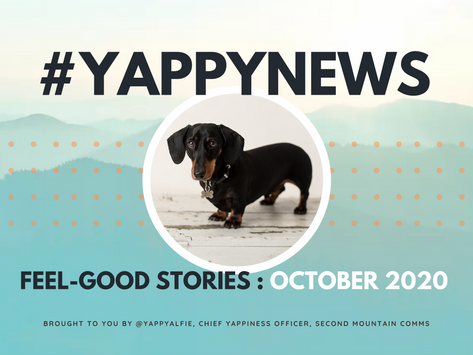 Yappy News: Alfie's feel-good stories from October 2020