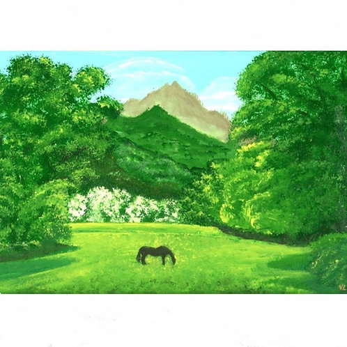 105.  Big Island Country.  2020 (canvas print)