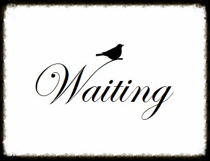 Top 5 Things, I Would Have Told Me:  Stop Waiting To Be ASKED!