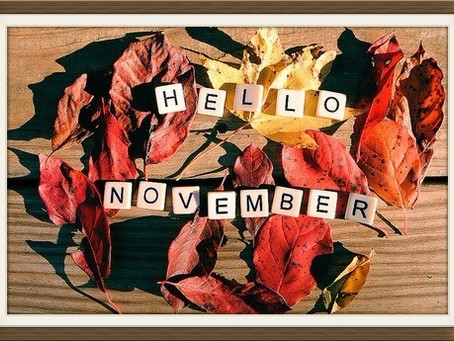 Monthly Moment: Never Give Up November