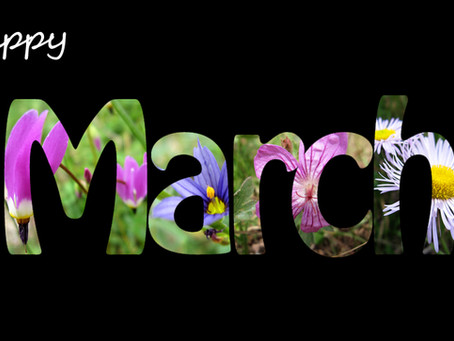 Monthly Moment: Mindful March