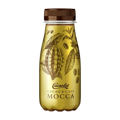 Cacaolat Mocha 200ML 12 Pack