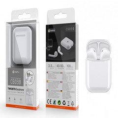 C6038 TWS Bluetooth Pods Larix with recharge case