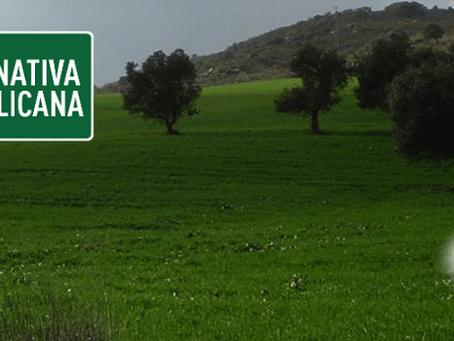 Se celebró el Congreso Extraordinario de la Federación Andaluza de ALTER