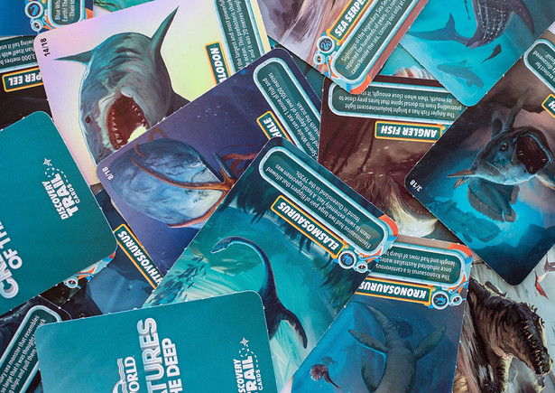 Trail Collector Cards