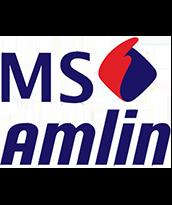 MS Amlin