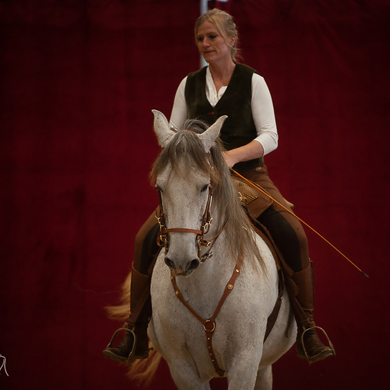 Art of Riding Intensiv-Wochenende - Oktober 2021 (2)