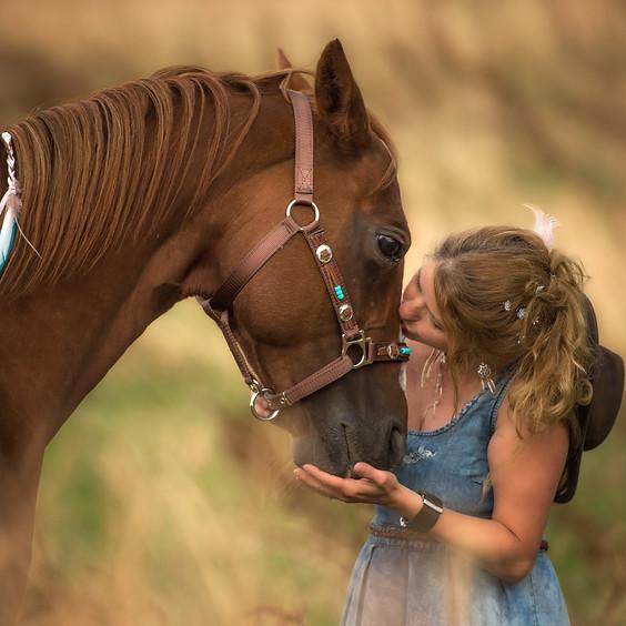 Erlebnisnachmittag mit Ponys und Pferden - etwas für die ganze Familie (2)