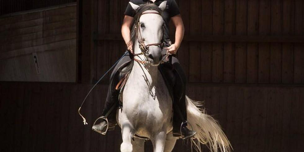 Art of Riding 1-Jahres-Ausbildung NEU