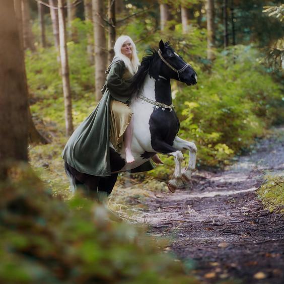 Ausritt - für Reitschüler Lucy's Pferdepark - Oktober (2)