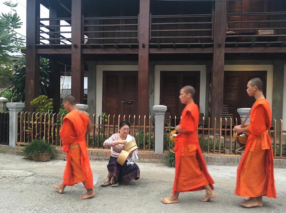buddhalaisia munkkinoviiseja.