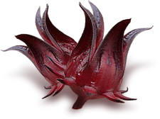 Dehydrated-HIBISCUS.png_350x350.png