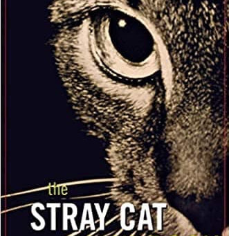 ECCP's Official Stray Cat Policy