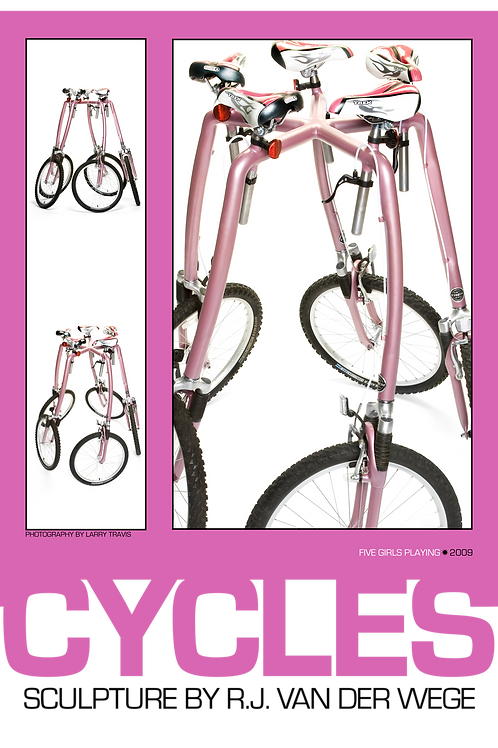 Pink Cycles Poster