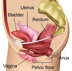 "Suffering from ""key in the door"" syndrome? Find your pelvic floor..."