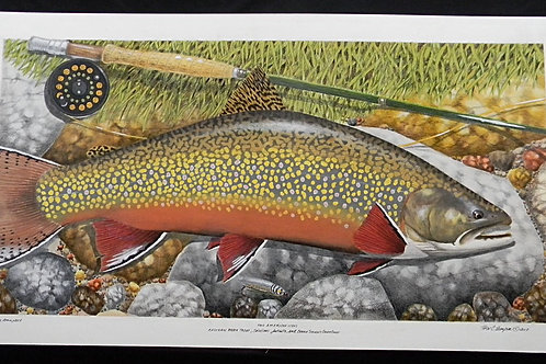 Two American Icons - Eastern Brook Trout and Carrie Stevens Grey Ghost