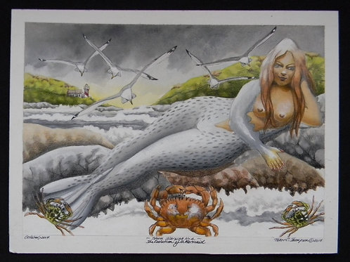 Storm Warning No.2 - The Evolution of a Mermaid