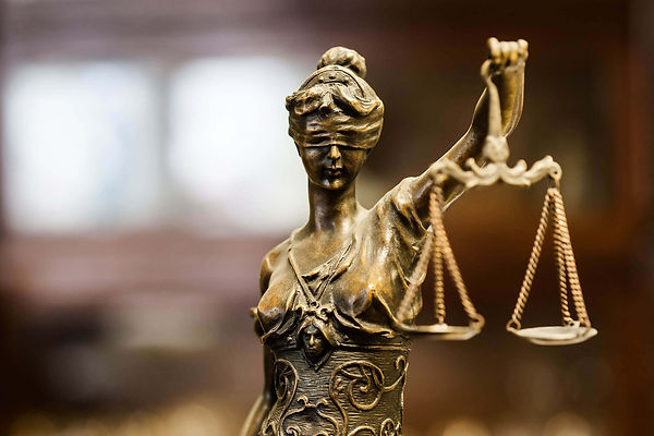 Legal Management and Consulting