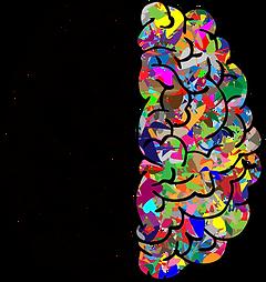 brain-vector (1).png