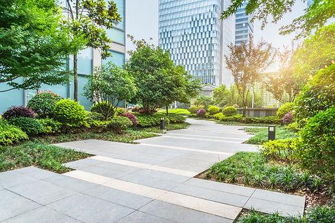 beautiful park at a sunny day,shanghai,c