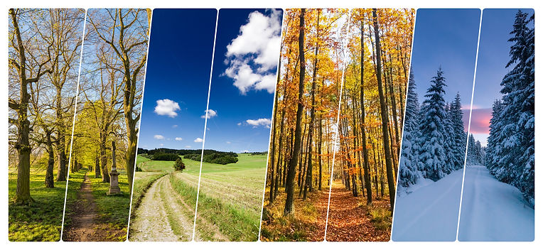 Four season collage from vertical banner