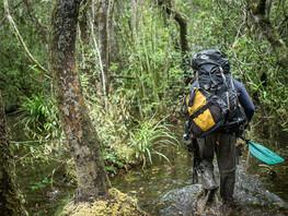 EXPLORING COLUMBIA'S CHIRIBIQUETE NATIONAL PARK – MICHEAL DZIWOSKI