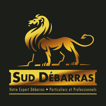 Sud_Débarras.jpg
