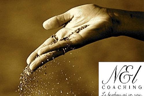 BOX N&L Bilan Coaching