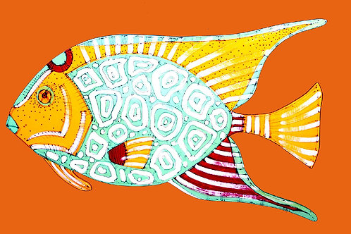 Angelfish in Orange