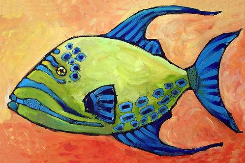 Queen Triggerfish in Orange