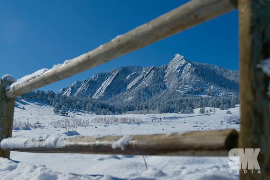 Bluebird Winter Day Framed
